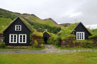 Maisons avec toits végétalisés